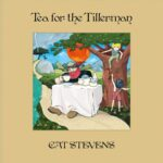 Mona Bone Jakon & Tea For The Tillerman